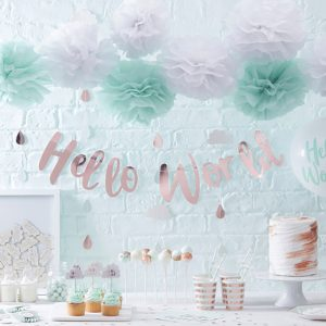 Hello World Baby Shower Range