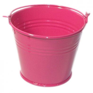 Fuchsia Miniature Bucket